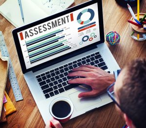 Website Assessments from Partner Pro